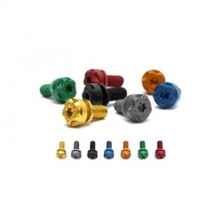 Screws Kit for Exhaust TWO BROTHERS RACING