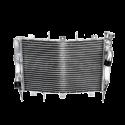 Radiator Type Origin
